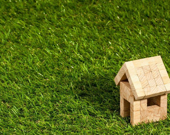 Dachy zielone, czyli przyjemne z pożytecznym
